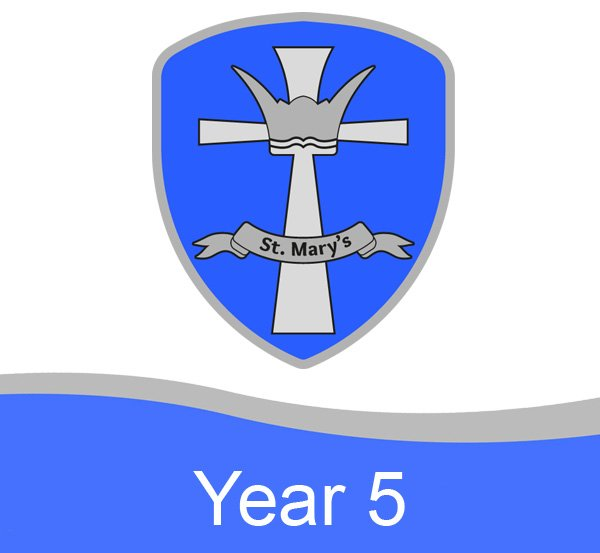 Year 5
